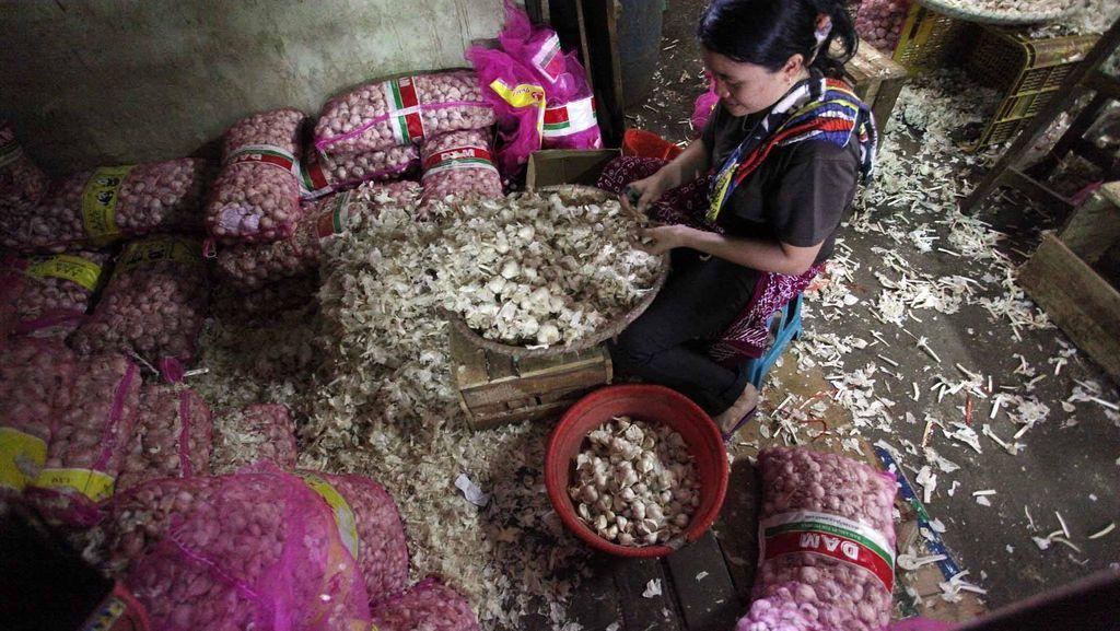 Turunkan Harga, Bulog Bakal Impor 1.000 Ton Bawang Putih