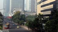 Aksi Pasukan Hijau Bikin Jalanan Ibu Kota Adem