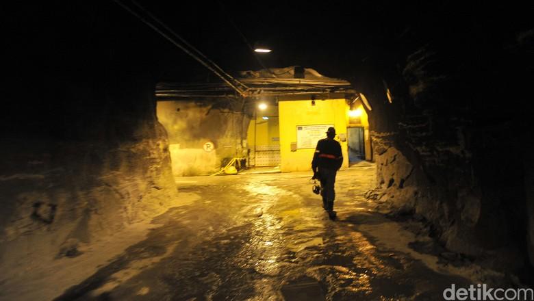Smelter Gresik Beroperasi Lagi, Produksi Freeport Pulih 40%