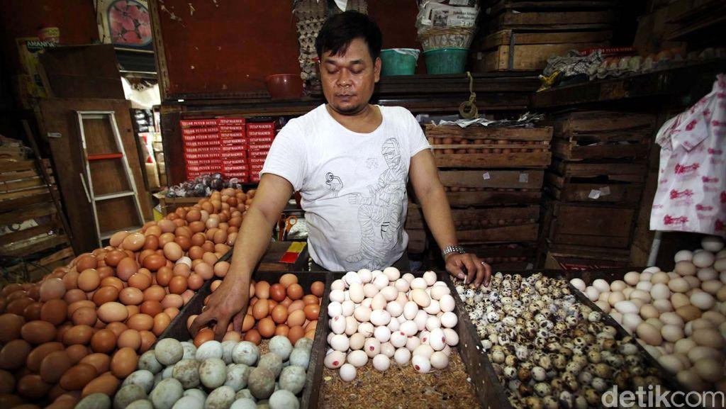 Harga Telur Ayam Turun Tipis Jadi Rp 25.000/Kg
