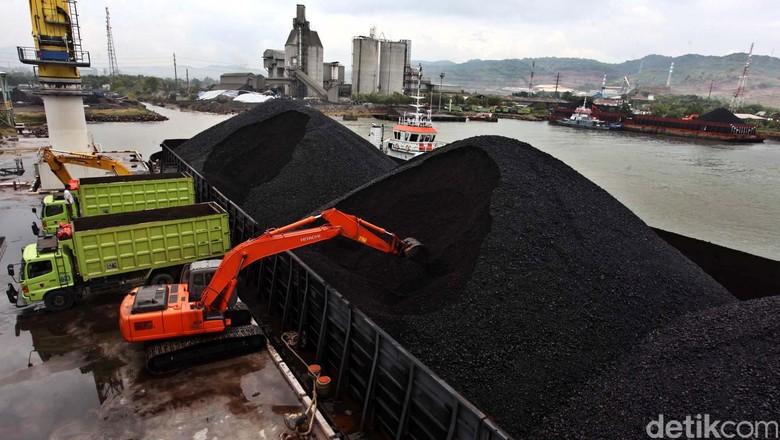Saham Berau Didepak, Analis: Industri Batu Bara Sudah Jenuh