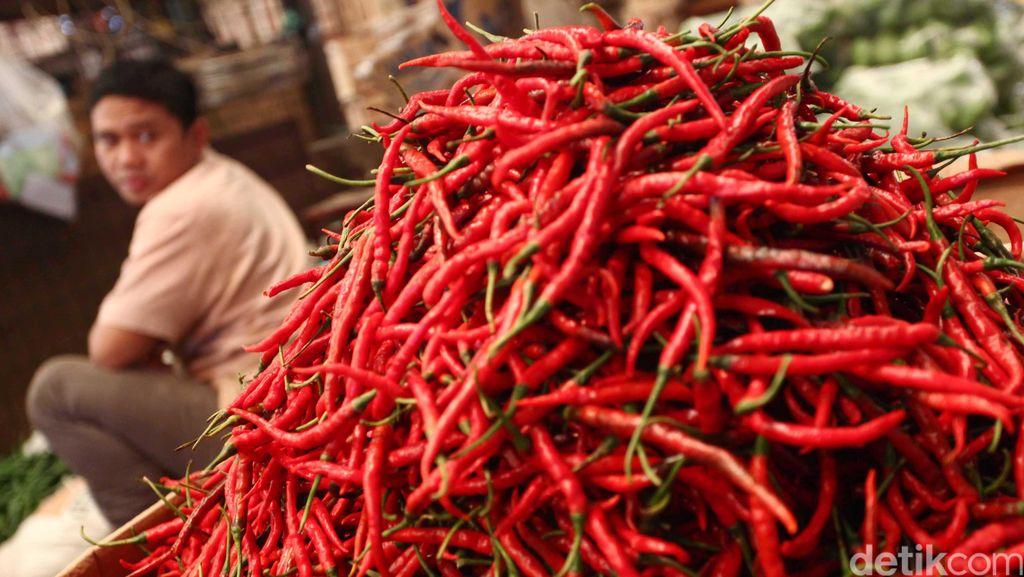 Harga Cabai Rawit Merah Rp 100.000/Kg, Ini Tanggapan Kementan