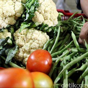 Indonesia Bakal Ekspor Sayuran Hingga Ikan ke Qatar