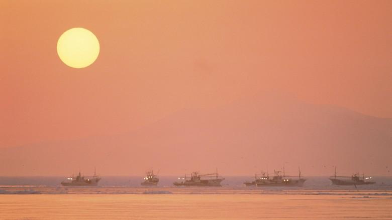 Ini Identitas 4 WNI yang Tenggelam di Perairan Taiwan