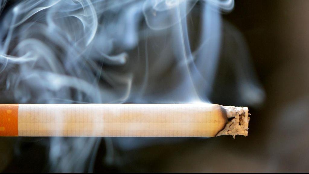 Magic! Alat Buatan Cah Semarang ini Bisa Sulap Asap Rokok Jadi Oksigen