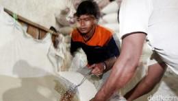 Masih Tinggi, Harga Beras Medium di Pasar Induk Cipinang Rp 11.000/Kg