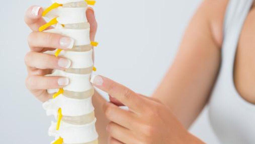 Apakah Tulang yang Sudah Keropos Bisa Tumbuh Lagi?