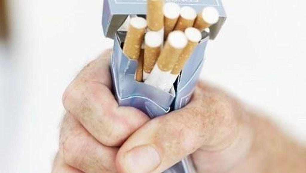 FDA Jajaki Aturan Baru agar Bisa Kurangi Jumlah Nikotin dalam Rokok