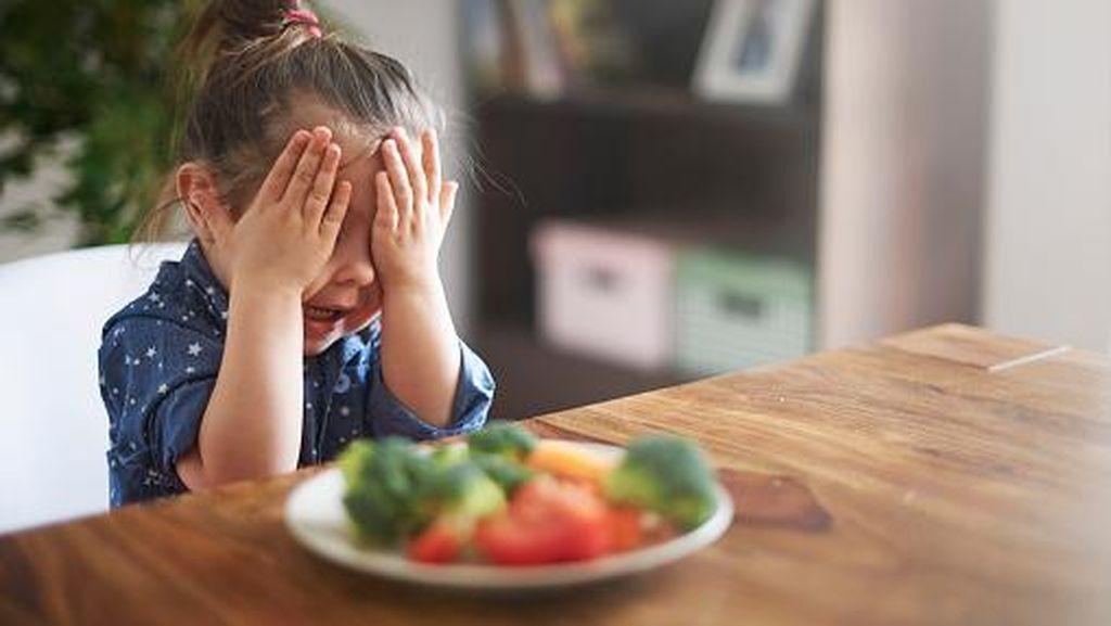 Anak Nggak Mau Makan Sayur, Apa Harus Dipaksa Ya?