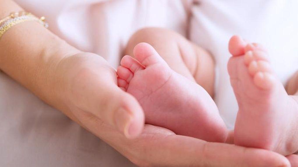 Informasi Penting tentang Perawatan Bayi Baru Lahir
