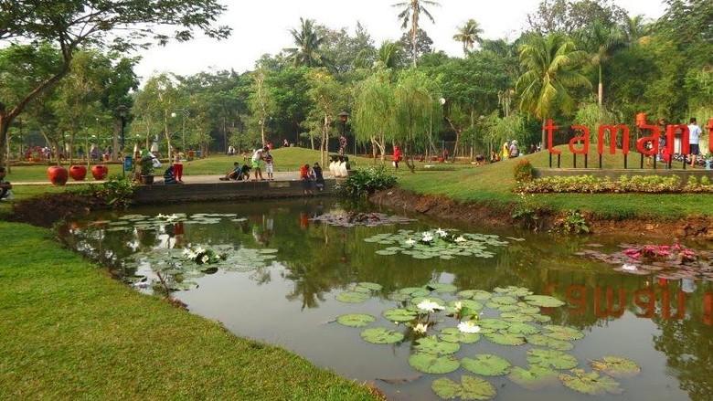 Keren Banget! Penampakan Taman Tabebuya di Jagakarsa yang Indah