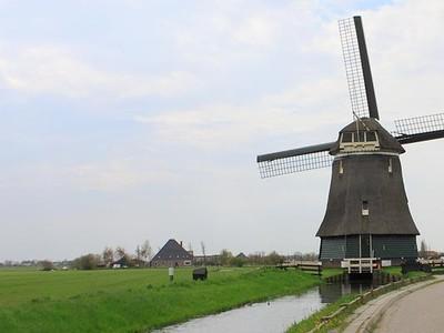 Amsterdam Palakin Turis?