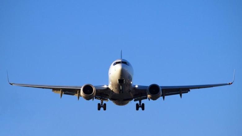 Pesawat American Airlines Dikawal Jet Tempur, Pria Turki Ditahan