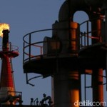 Kereta Api Hingga Alutsista Mau Pakai Biodiesel Tahun Ini
