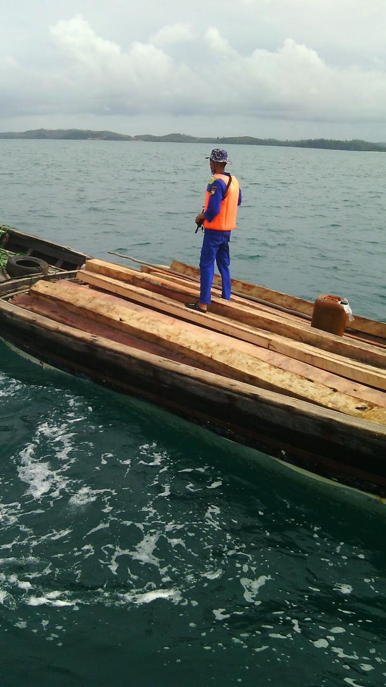 Kapal Bermuatan 10 Ton Kayu Disergap Polisi di Kepri, Nakhoda Terjun ke Laut