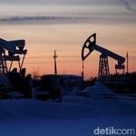Jelang Pertemuan OPEC, Harga Minyak Merangkak Naik