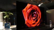 LG Pamer TV OLED Setipis Kartu Kredit