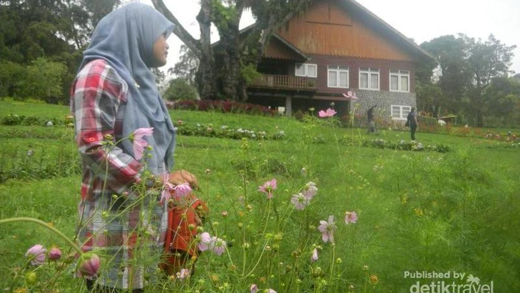 Wah, Bondowoso Juga Punya Taman Bunga Keren