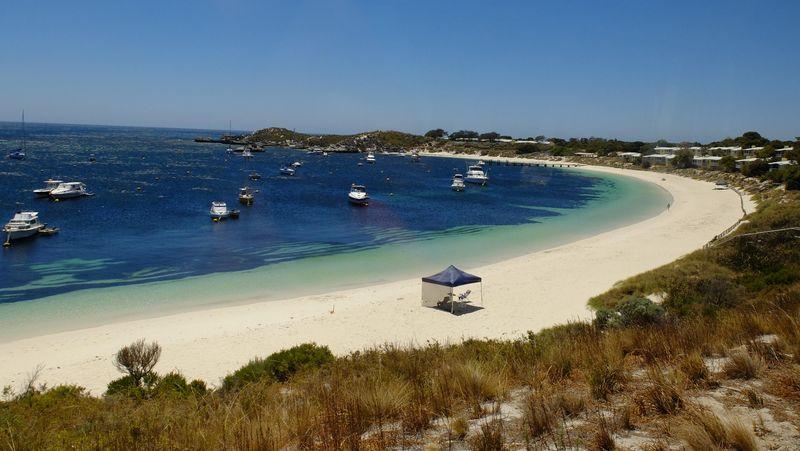 Foto: Rottnest Island terletak 19 Km dari pesisir Kota Fremantle, dekat ibukota Western Australia yakni Perth. Pulau ini memiliki luas 19 Km2 (Sastri/detikTravel)