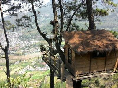 Yang Fotogenik di Malang, Hotel di Atas Pohon