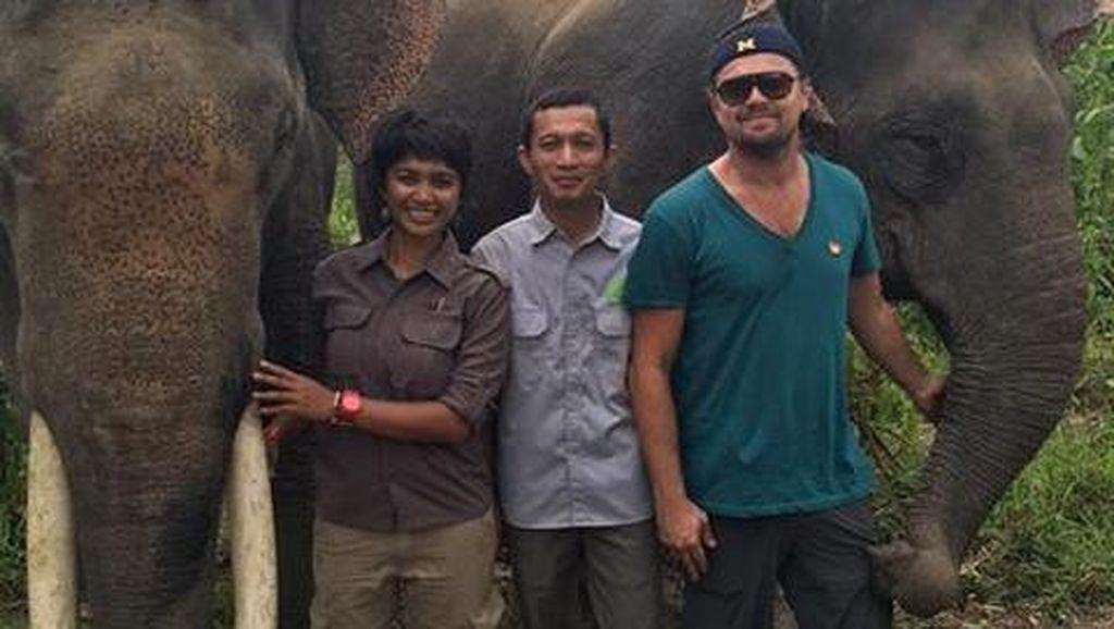 Leonardo DiCaprio Pose Bareng Gajah Sumatera, Kampanyekan Peduli Lingkungan