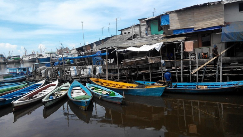 Perhatikan, Ini Beda Patin Lokal dan Patin Vietnam yang Berbahaya