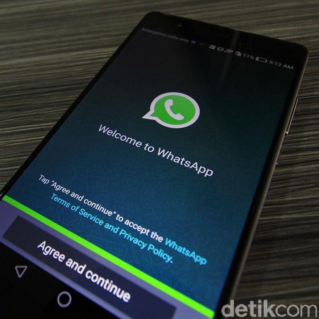 WhatsApp Bisa Dipakai Transfer Uang