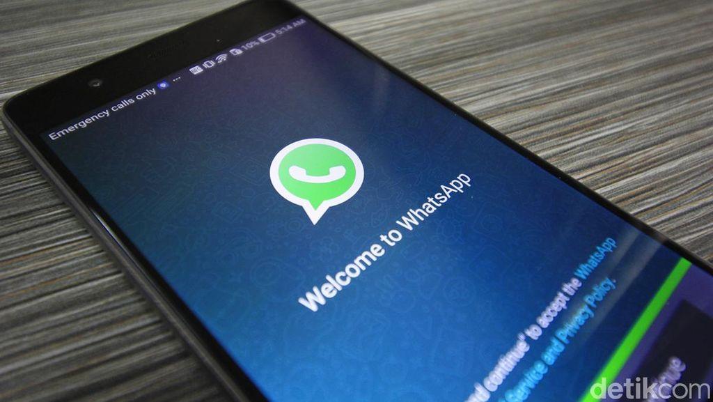 Pantau Lokasi Teman Lewat WhatsApp? Bisa!