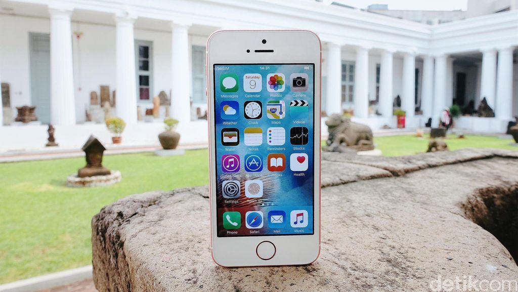 iPhone SE 2 Meluncur di WWDC 2018, Apple?