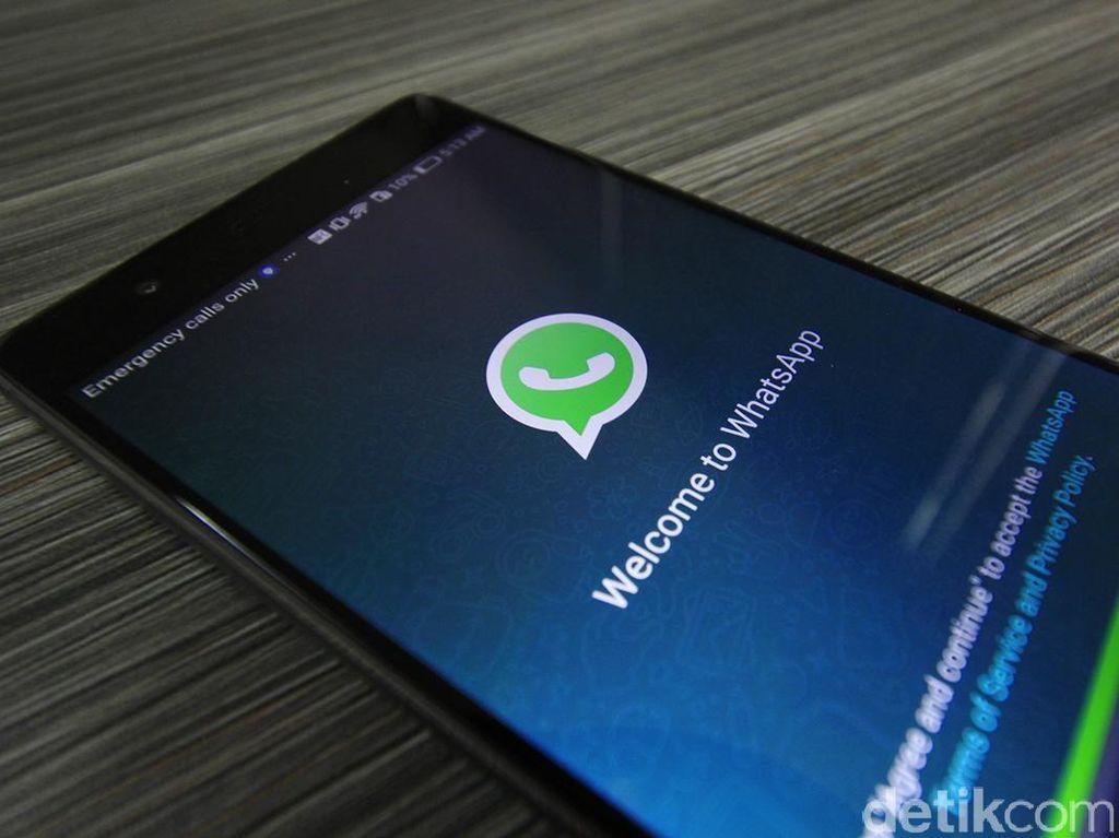 Jangan Sedih! Foto WhatsApp yang Dihapus Bisa Kembali
