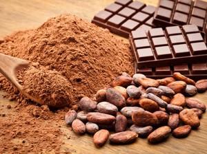 Napoleon Doyan Cokelat dan Sajian Cokelat Pertama di Dunia, Ini 12 Fakta Unik Cokelat (2)