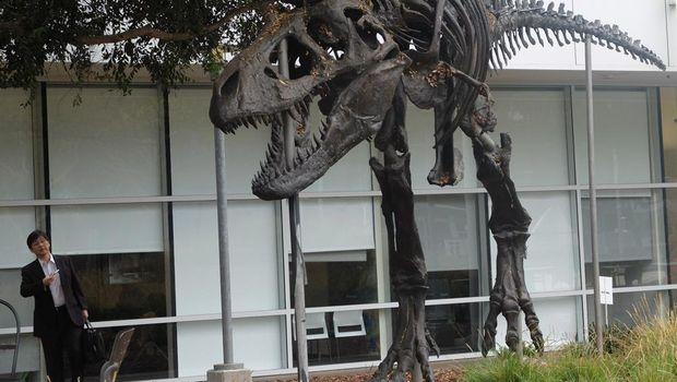 Fosil T-Rex di kantor Google, Mountain View, Amerika Serikat (fotografer: Achmad Rouzni Noor II/detikINET)
