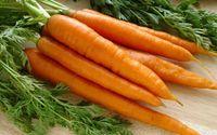 Sebelum Belanja, Cek Dulu 10 Tips Memilih Sayur dan Buah Ini! (2)