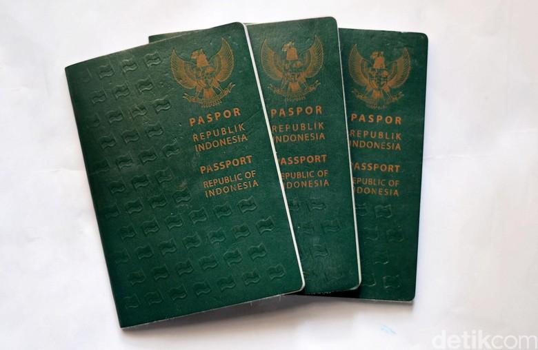 Soal 72 Ribu Pendaftar Paspor Fiktif, Dirjen Imigrasi: Ini Sindikat