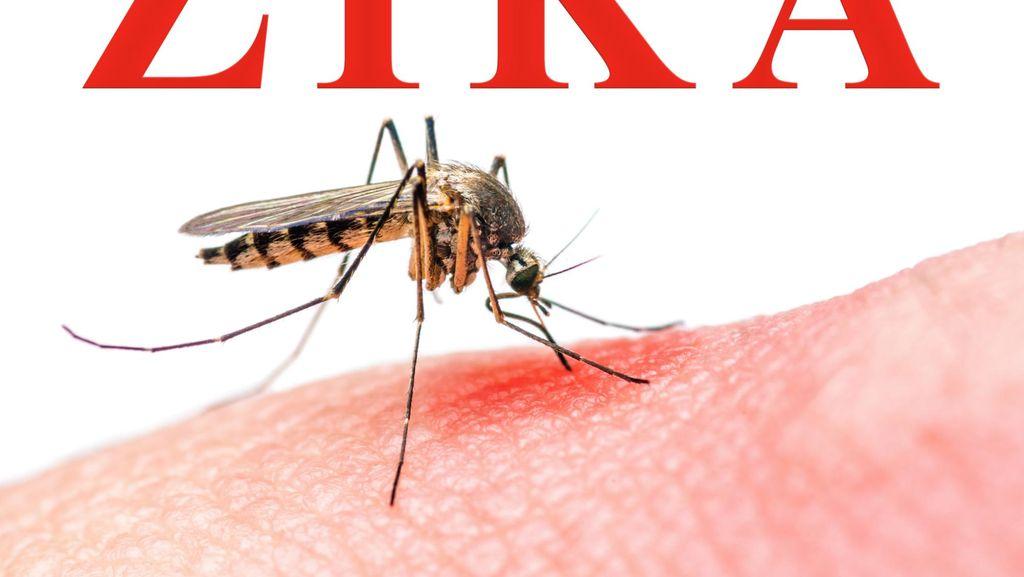 Wabah Zika di Singapura Serang 341 Orang, 8 di Antaranya Wanita Hamil