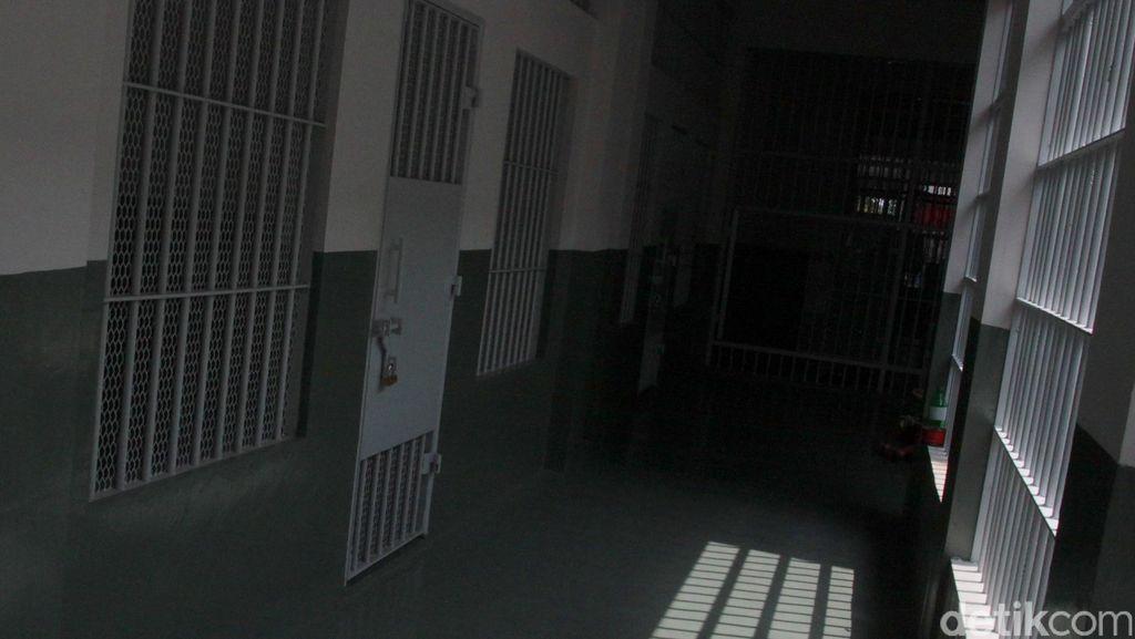 Impor 55 Kg Daun Katinona dari Ethiopia, Yatrika Ditangkap di Batam