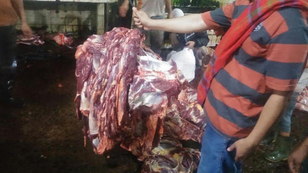 Titik Soeharto: Swasembada Daging Harus Segera Dimulai