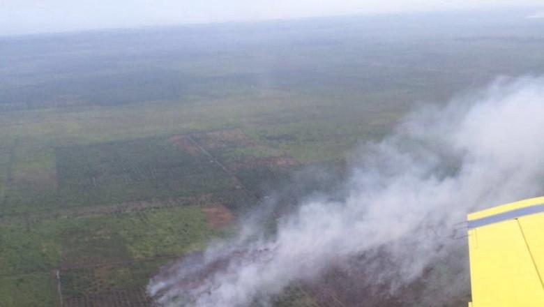 Satelit Modis Deteksi 482 Hotspot Kebakaran Hutan dan Lahan di Indonesia