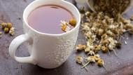 Minum Teh Chamomile Bisa Bikin Tidur Nyenyak dan Cegah Kanker