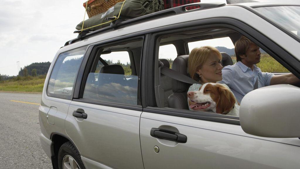 Mudik Naik Mobil, Jangan Lupa Istirahat dan Bawa Sopir Cadangan
