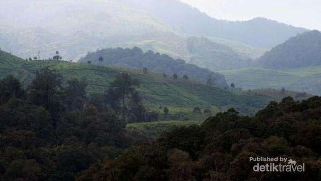 Mumpung Libur Sekolah, Ajak si Buah Hati ke 10 Destinasi Keren di Bandung