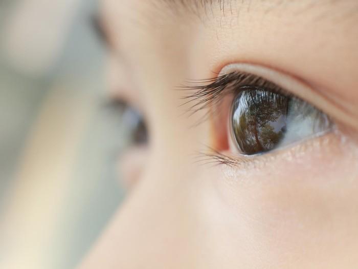 Ada banyak gerakan yang bisa membuat mata terasa segar. Foto: ilustrasi/thinkstock