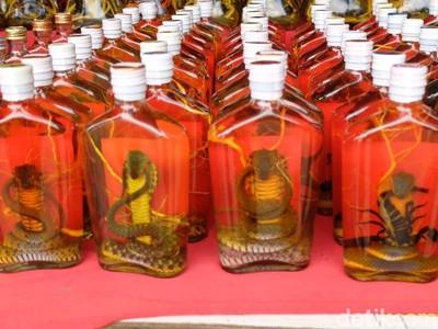 Oleh-oleh Unik dari Perbatasan Laos: Whiskey Ular & Kalajengking