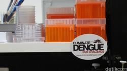 Bakteri Wolbachia menjadi salah satu terobosan penting dalam mengatasi penularan virus Dengue. Nyamuk yang terinfeksi bakteri ini tidak bisa menularkan Dengue.