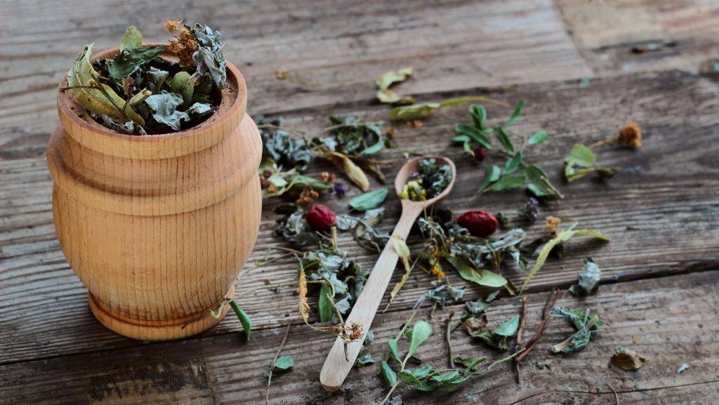 Ini Alasan Kurangnya Jumlah Obat Herba Terstandar dan Fitofarmaka di Indonesia