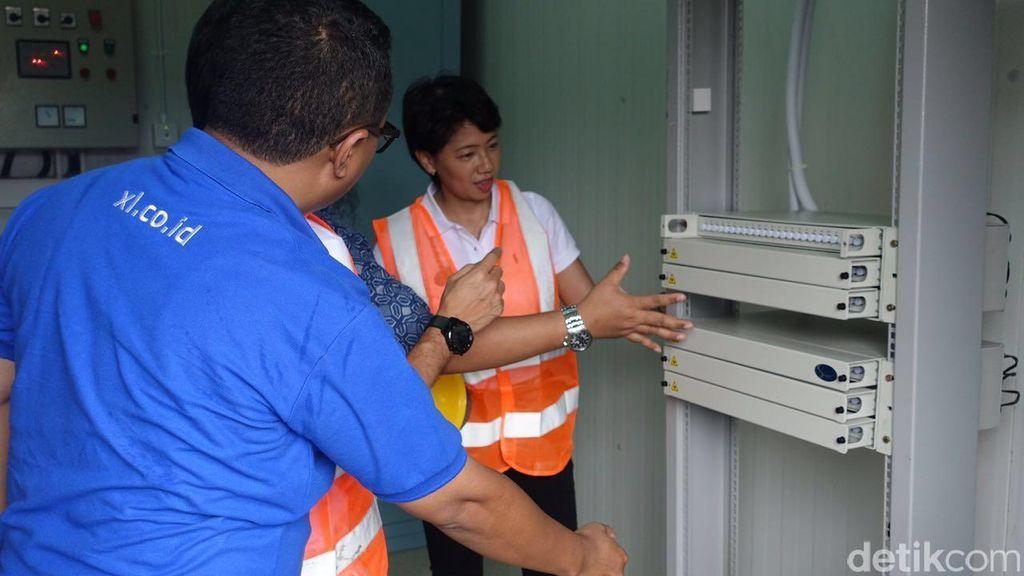Lahan Gambut Kalimantan Jadi Tantangan XL Tanam Fiber Optic