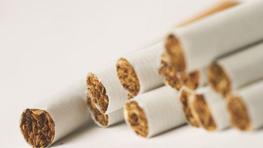 Mulai Tahun 2018, Vatikan Melarang Penuh Penjualan Rokok