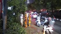 35 Rumah Rusak dan 41 Pohon Tumbang Akibat Hujan dan Angin Kencang di Jaksel