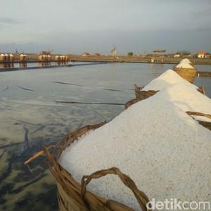 RI Butuh 3,7 Juta Ton Garam Industri, Darmin: Diimpor Bertahap