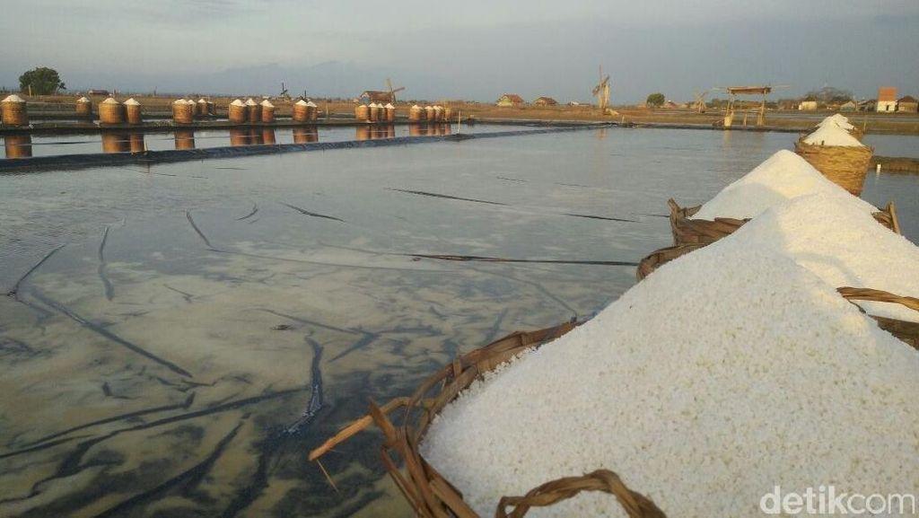 Thailand, Australia, hingga Mesir Berlomba Tawarkan Garam ke RI